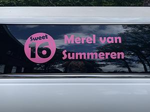 Sweet sixteen Merel